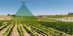 Dronewerkers MDL agro